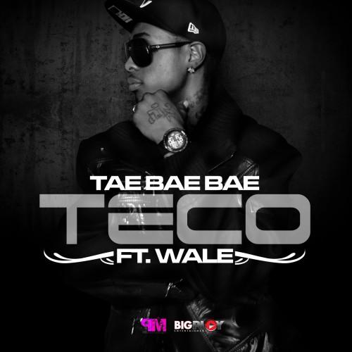 tae-bae-bae-teco-500x500