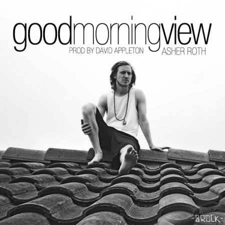 asherrothgoodmorningview-450x450