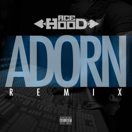 adorn-ace-hood-cover